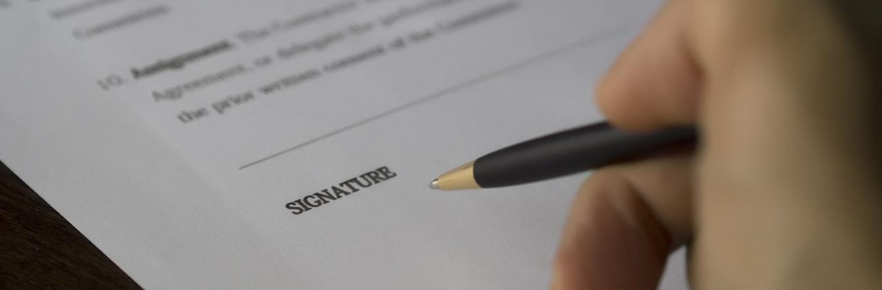 Procedure in eerste aanleg verzoekschriftprocedure en procedure dagvaarding